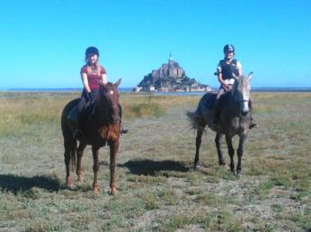 msm horseriding